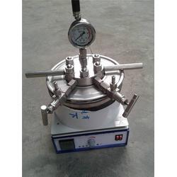 三亚水热合成反应釜-杜甫仪器(在线咨询)水热合成反应釜不锈钢图片