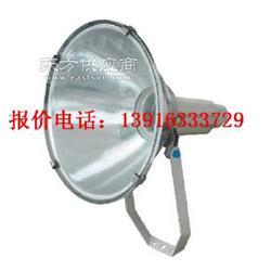 GT102 防水防尘防震投光灯 GT101 400W投光灯图片