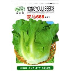 蔬菜种子公司、蔬菜种子、爱普农图片