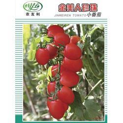 爱普农|【番茄种子供应】|番茄种子图片