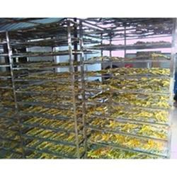 木板烘干房_天泉烘干房全国销售网_抚州烘干房图片