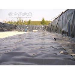 黄鳝养殖专用膜 18660856986图片
