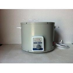 PTHW型5000ml调温电热套图片