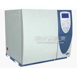 酸化油脂肪酸分析专用气相色谱仪图片