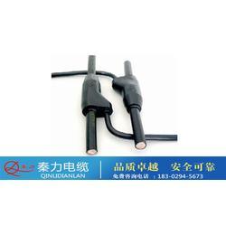 预分支电缆厂家、西安电缆厂(在线咨询)、西安预分支电缆图片