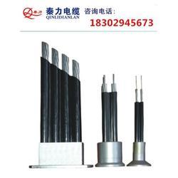 汉中架空集束导线-陕西电缆厂-什么是架空集束导线图片