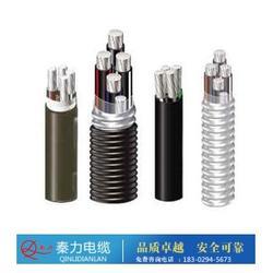 鋁合金電纜需求-陜西電纜廠-榆林鋁合金電纜圖片