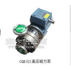高压-磁力泵图片