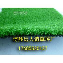 足球场草坪公司图片