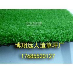 足球场塑料草坪哪家好图片