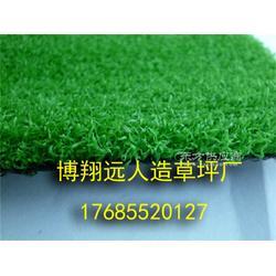 11人制足球场假草皮每平米造价图片