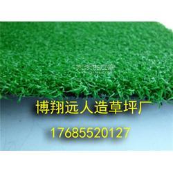室内小型足球场草坪供应商图片