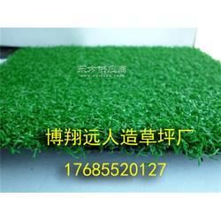 标准足球场塑料草皮安装方案图片