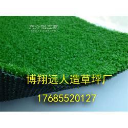小型足球场塑料草坪怎么卖图片