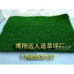 室内小型足球场塑料草皮图片
