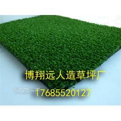 室内足球场塑料草坪哪家好图片