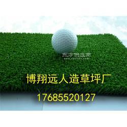 室内小型足球场塑料草皮施工图片