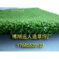 室内足球场人工草坪供应商图片