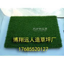 室内足球场草坪每平米多少钱图片