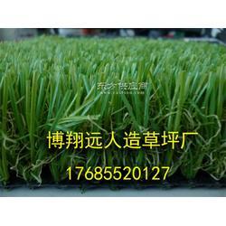 标准足球场塑料草坪图片