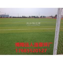 屋顶足球场人造草坪施工图片