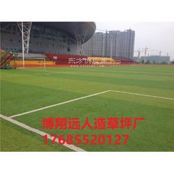 标准足球场人造草坪生产厂家图片