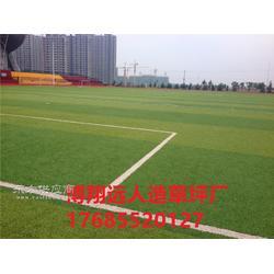 屋顶足球场人造草坪多少钱一平图片