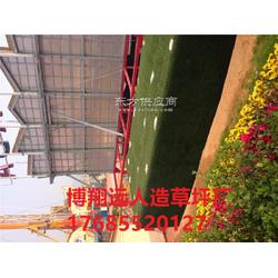 室内小型足球场塑料草坪生产厂家图片