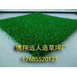 足球场人工草坪怎么卖图片