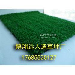 小型足球场人工草坪图片