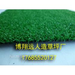 小型足球场塑料草坪每平米造价图片