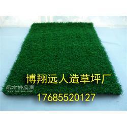 屋顶足球场塑料草皮每平米多少钱图片
