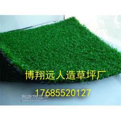 11人制足球场人造草坪地毯每平米造价图片