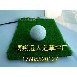 足球场塑料草坪供应商图片