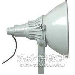 天狼星NTC9200防震投光灯图片