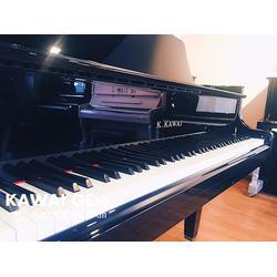 成人音乐培训在哪里好-福保成人音乐培训-专业乐器培训(查看)图片