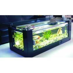 供应酒店生态鱼缸可定做酒店鱼缸图片