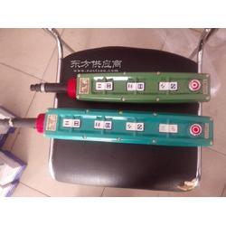 LA5817-6K防爆电动葫芦按钮图片