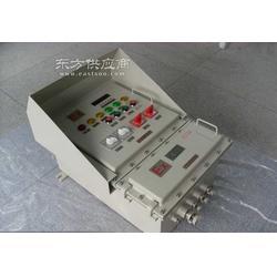 IIB级油田专用防爆配电箱带防护箱图片