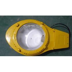 防爆道路照明灯具-防爆道路照明灯具图片