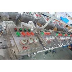 BXM53-T防爆照明配电箱图片