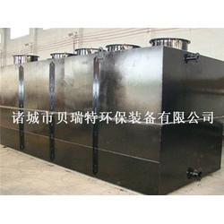 诸城市贝瑞特环保_淀粉污水处理设备参数_江门淀粉污水处理设备图片