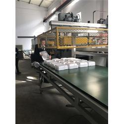 发泡快餐盒生产线,龙口海元塑料机械,广东快餐盒生产线图片