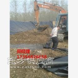 铜仁车库绿化排水板材质图片