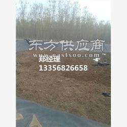 永立牌养猪场厌氧池防渗膜焊接》欢迎您图片