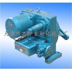 电动执行器DKJ-6100、电动执行器、电动执行器生产厂家图片