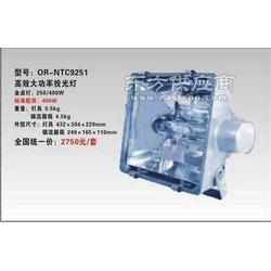 皇隆照明NTC9251高效大功率投光灯图片
