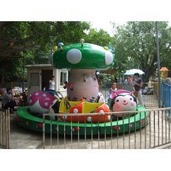 瓢虫乐园|瓢虫乐园|强力游乐提供新型瓢虫乐园图片