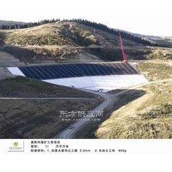 高密度HDPE膜市场 防渗膜厂家 防渗膜供应商图片
