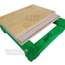 防止羽毛球木地板 运动木地板的被侵蚀图片